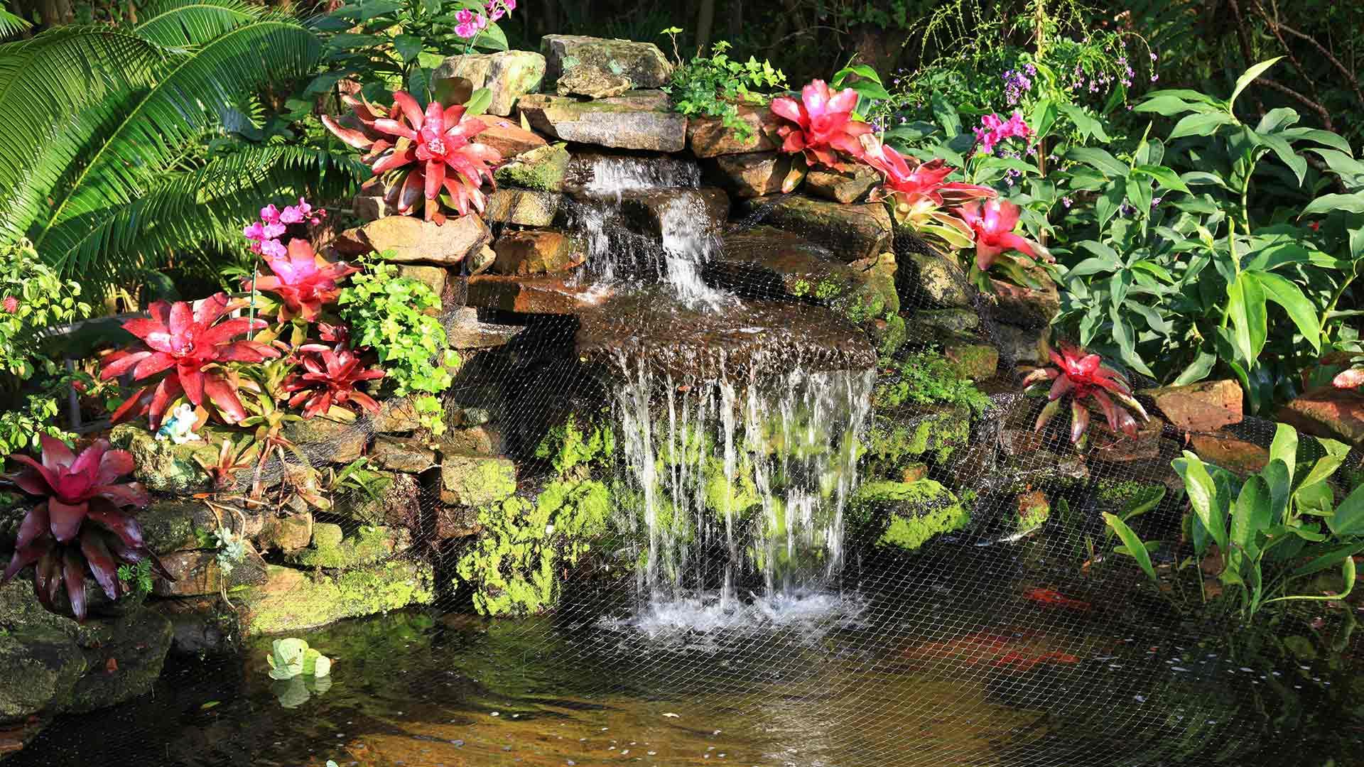 Premier Horticulture Landscape Design, Landscaping and Garden Design slide 3