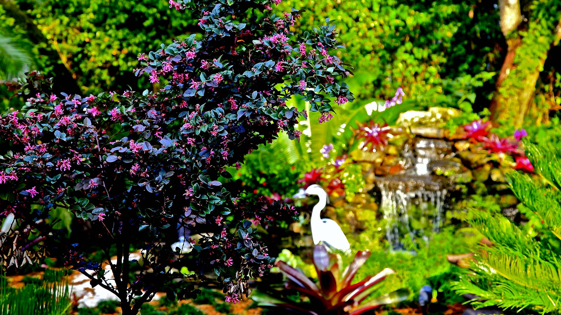 Premier Horticulture Landscape Design, Landscaping and Garden Design slide 1
